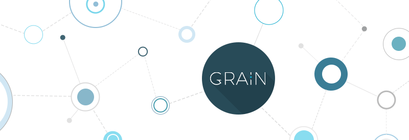 'Creating a custom website or a theme with Grain' post illustration